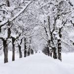 winter homeowners